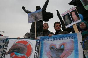 Москвичи не хотят ходить в дельфинарий
